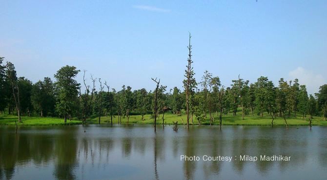 Accommodation Near By Purna Wildlife Sanctuary  Gujarat